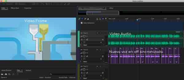 Captura de pantalla de la sesión de doblaje.  La voz en off británica está en morado a la derecha.  La referencia visual del vídeo está a la izquierda.