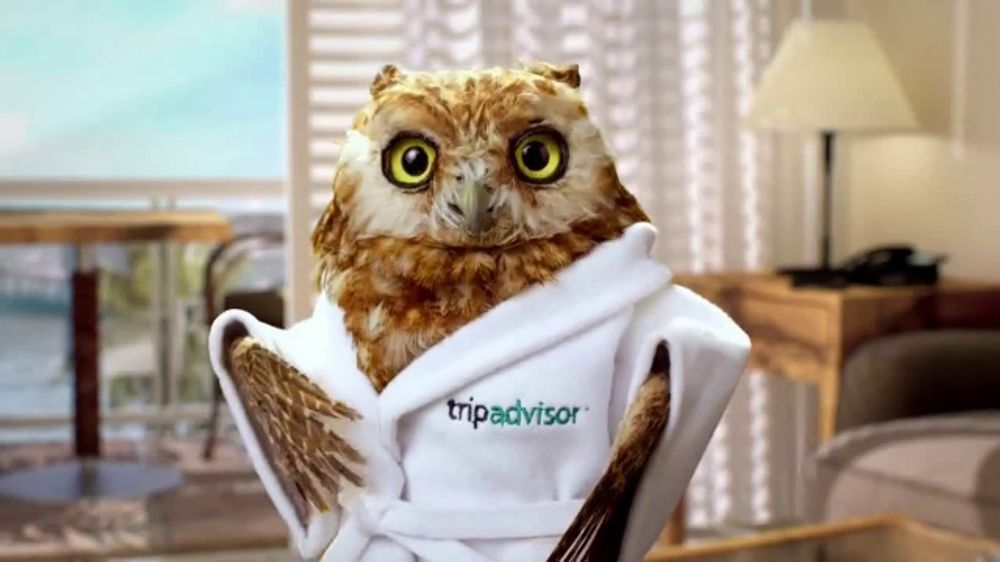 Voiceover for Tripadvisor's owl (Little Wiser) in their TV campaigns in the UK, USA and Canada.