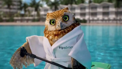 British Male Voice - Tony Collins Fogarty was the voice of TripAdvisor's owl on TV.  Still from campaign.
